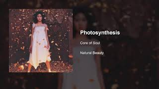 CORE OF SOUL - Photosynthesis