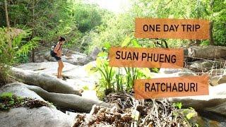 travel-vlog-suan-phueng-ratchaburi-