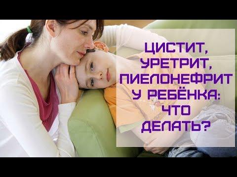 Инфекции мочеполовой системы у ребёнка: ЦИСТИТ, ПИЕЛОНЕФРИТ: что делать?