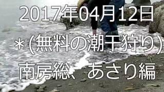 2017年4月12日に、千葉県南房総市の某海岸に潮干狩りをして参りました。...