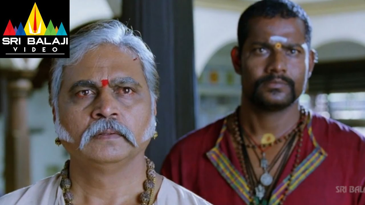 Maryada Ramanna Movie Sunil Nagineedu And Mallusuri Scene Sunil Saloni Sri Balaji Video