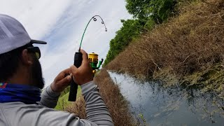 Ultra CLEAR DITCH Fishing for Pet Fish UNDERWATER FOOTAGE | Monster Mike