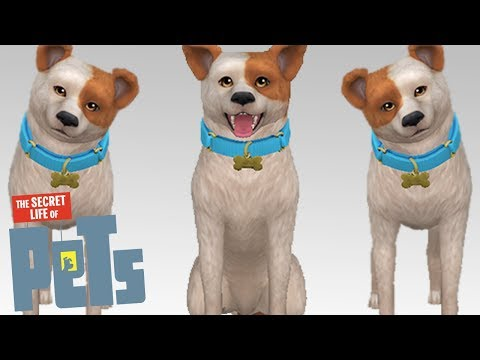 MAX || The Sims 4: Create-a-Pet // SECRET LIFE OF PETS