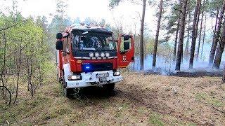 Potężny pożar lasu. Strażacy walczą z ogniem
