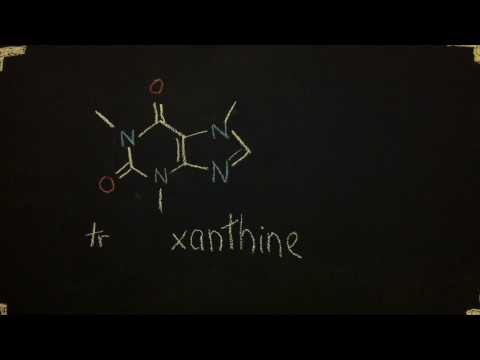 xanthines