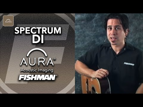 Player Tips For The Fishman Aura Spectrum DI