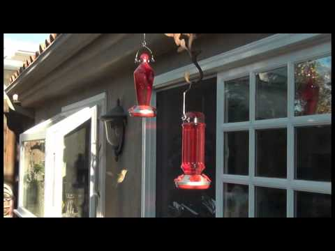 hummingbird hanging pa etc glass pixies large collections recycled feeder feeders clocks