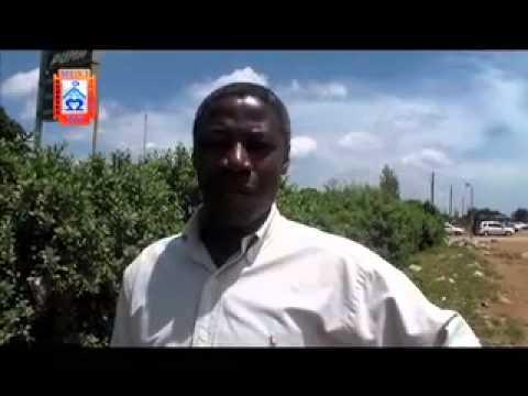 MUVI TV  VENEZUELA ZAMBIA