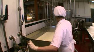 Cafe Cheese - The Science and Art of Cheese Making