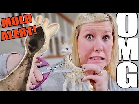 DOES 'SOPHIE THE GIRAFFE' HAVE MOLD???