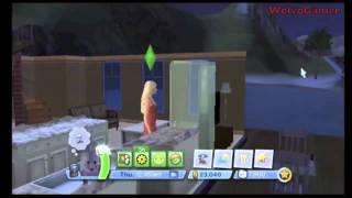 The Sims 3 Wii Cheat | Unlimited Money  + Commentary