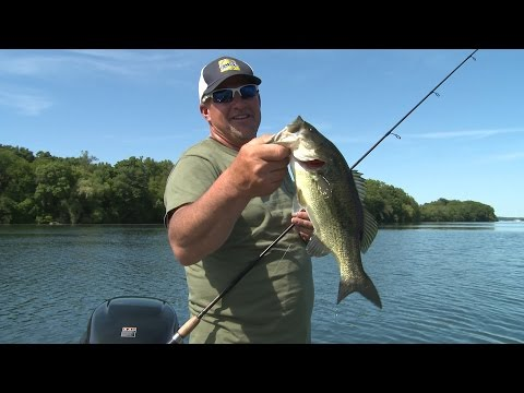 Larry Smith Outdoors - Madison Chain Bass and Bluegills