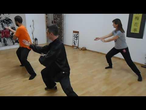 Tai Chi Training in Master Bill Drougas Group