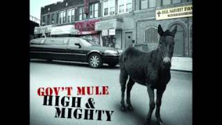 Gov`t mule   Mr high and mighty