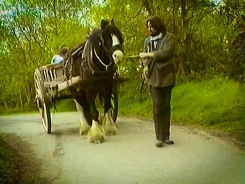 Arrival of the potato blight  in Ireland- Irish Famine