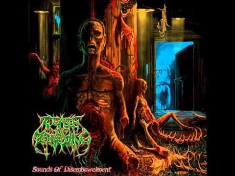 Cease Of Breeding Sounds Of Disembowelment [Full Album] (2010)