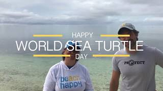 30A Celebrates World Sea Turtle Day 🐢
