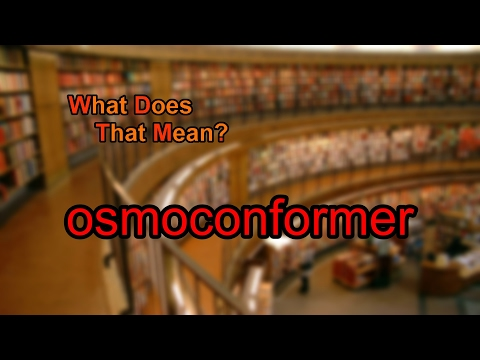 What Does Osmoconformer Mean?