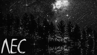 Страшная история на ночь  Лес