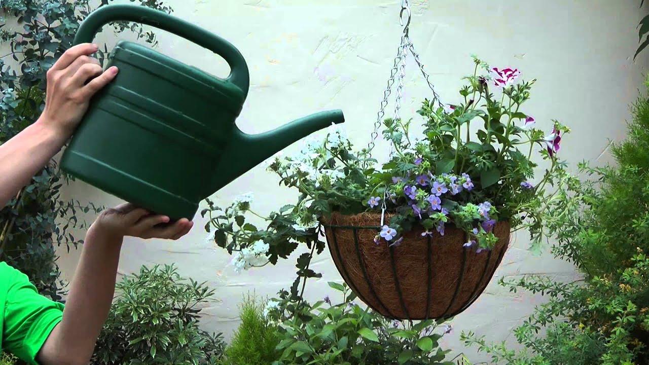 14 c mo crear una cesta colgante con flores youtube for Como poner un vivero