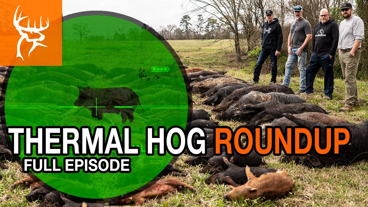 THERMAL HOG HUNTING | TEXAS EDITION | Full Episode