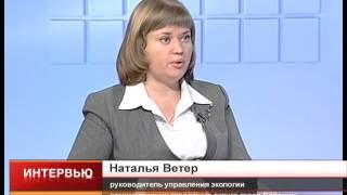 Главный эколог Воронежа про приют для бездомных собак: «Участок определён, проект разрабатывается»