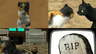 Cat sim online▪Birth to Death▪