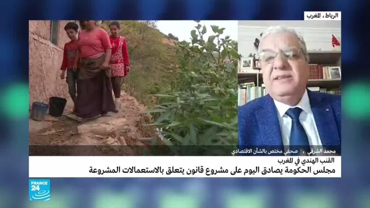 المغرب: تشريع القنب الهندي.. ما التداعيات الاقتصادية؟  - 15:00-2021 / 2 / 25