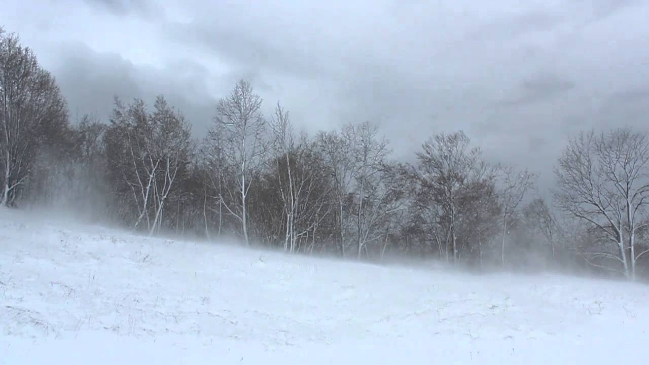 Image result for winter wind