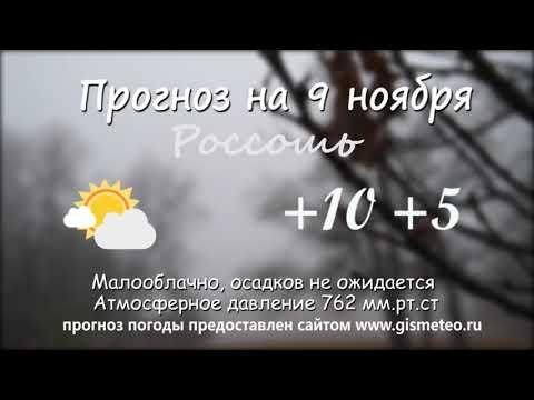 Прогноз погоды на 09.11.2019, Блокнот Россоши