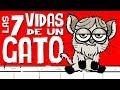 LAS 7 VIDAS DE UN GATO / NO TE PIERDAS EL FINAL / PÉSAME STREET