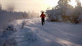 Dmitri Voloshin, a Moldovan athlete, set a record running 50km at -...