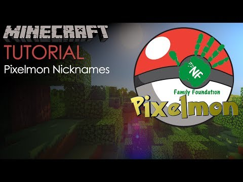 NF Family Foundation Minecraft Pixelmon Server: How to Change Your Pokemons Name