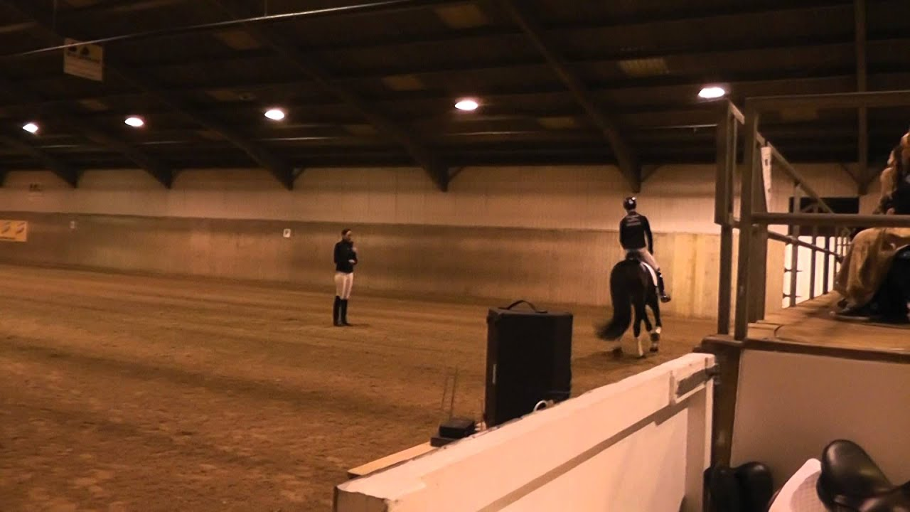 Matt Burnett Groundwork to Grand Prix Demo at Hartpury in December 2014