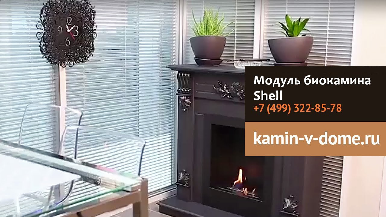 Kamin Youtube Биокамин модуль Shell Silver Smith Kamin V Dome Ru