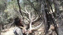 Shed Hunting in Cibecue, AZ