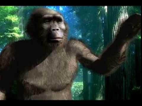 Bigfoot human Ancestor