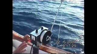 ΨΑΡΕΜΑ ΣΤΗ ΚΥΘΝΟ 80 Kg ψάρια