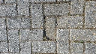 Abgesackte Pflastersteine anheben & neu verlegen /  Pflasterstein abgesackt ausbessern / reparieren