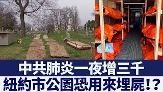 病例一夜增三千 紐約市公園恐用來埋屍?|新唐人亞太電視|20200407