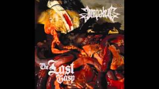 Impaled- The Last Gasp