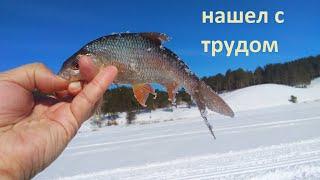 Рыбалка не реке кормлю 3 день ииииии где рыба завтра будет 4 день