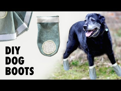 DIY Dog Shoes / Boots - Do They Really Work?