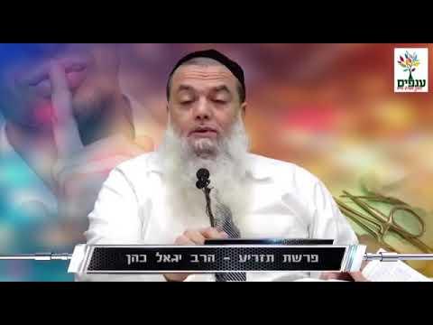 """חידושים לפרשת תזריע מהרב יגאל כהן שליט""""א"""