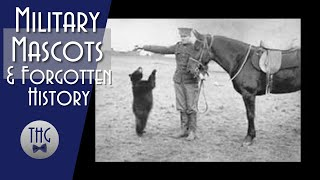 Military Mascots and a Silly Old Bear