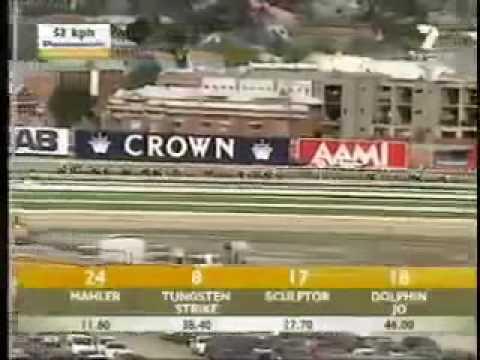 2007 Melbourne Cup - Efficient