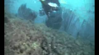 Three Coal Barges - Florida Panhandle Shipwreck Trail