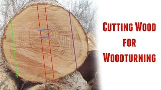 Cutting Logs into Turning Blanks ~ Part 1
