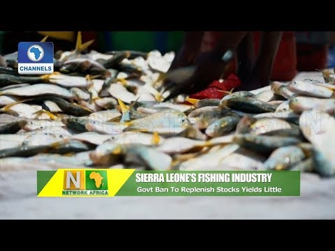 Sierra Leone Fishermen Say Govt Ban On Industrial Fishing Not Enough |Network Africa|