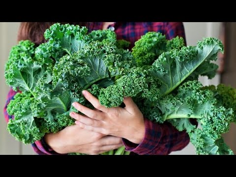 10 Foods To Help Reduce The Risk Alzheimer's Disease